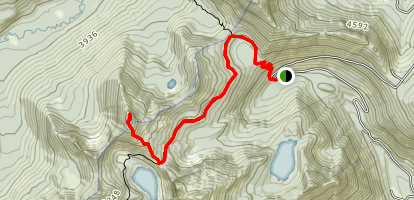 Mount McCausland Trail Map