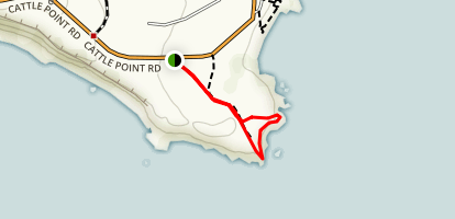 Cattle Point - San Juan Island Map