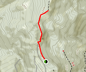 Red Top Lookout Trail Map