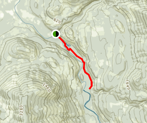 1000 Puddles Trail Map