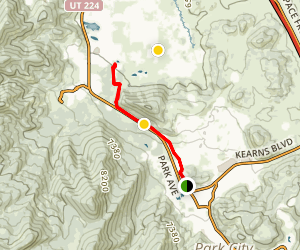 McLeod Creek Trail Map