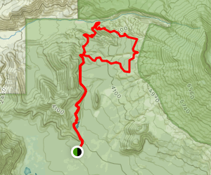 Toutle River Trail Map
