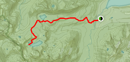 Cougar Lake and Little Cougar Lake Trail Map