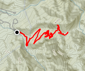 Whipple Trail Map