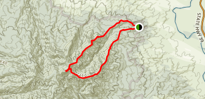 Pirongia Summit Loop Map