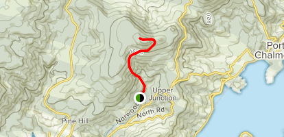Mount Cargill Walk Map