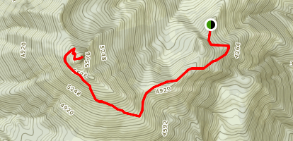 Sunrise Peak Trail Map