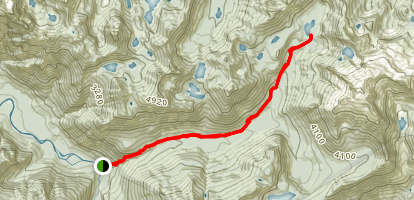 Dingford Creek Trail  Map