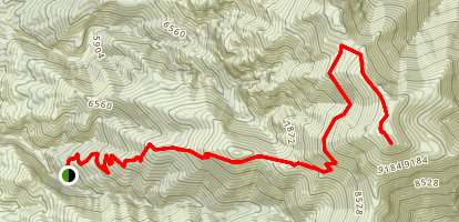 Star Peak Trail Map