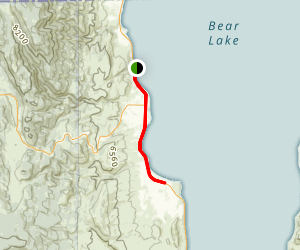 Bear Trail Map