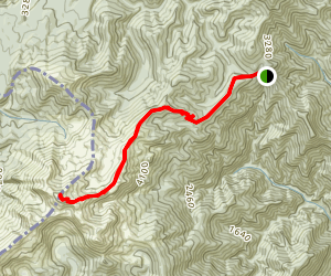 Mount Arthur Map