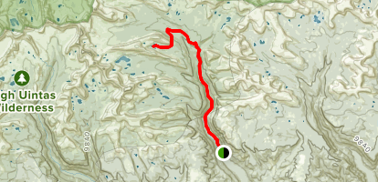 Painter Lakes Trail Map