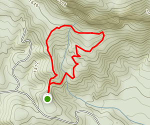 Rumbling Bald Loop Trail Map