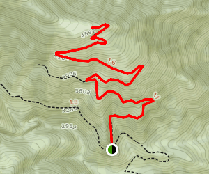 Wedge Mountain Trail Map