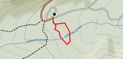 Sky Islands Forest Trail Map