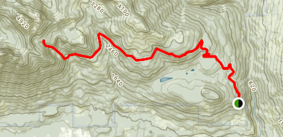 Mount Higgins Map
