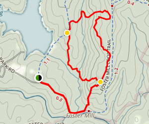 Beech Tree Trail Map
