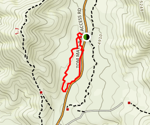 Tom Mays Nature Walk Map