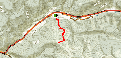 Berrypicker Trail Map