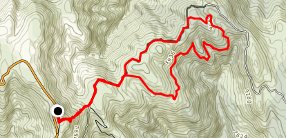 Mount Skene Trail Map