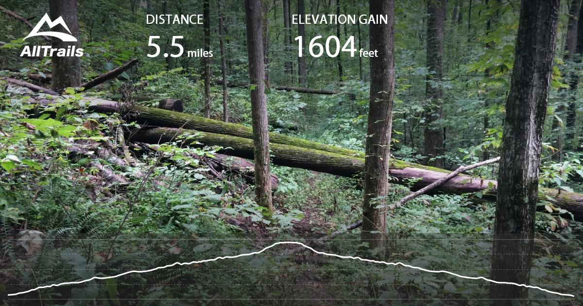 Stone Mountain Nc Elevation Gain : Stone mountain trail virginia alltrails