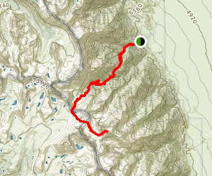 Mount Williamson Trail Map