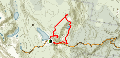 Mount Field East Loop Map