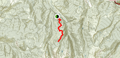 Dead Dog Trail Map