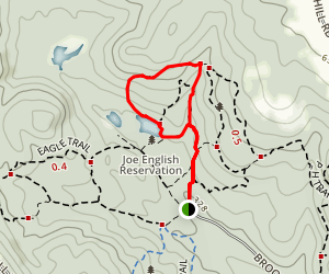 Pine Trail and Bacon Trail Loop Map