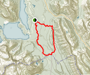 Whiskey Jack and Pocaterra Loop Trail Map