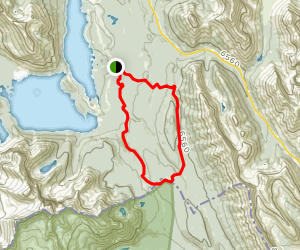 Whiskey Jack and Pocaterra Loop Trail [CLOSED] Map