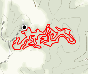 Cane Ridge Mountain Bike Trail Map