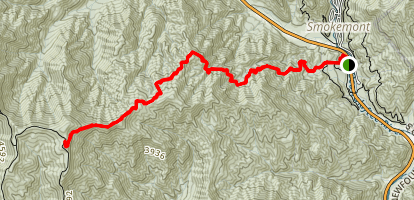 Newton Bald Trail Map