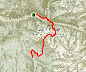 Avalanche Pass Trail to Roaring River Via Kanawyers Trail Map