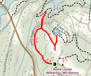Epps Forest Trail to Pond Map