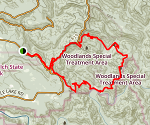 Jackson Demonstration Forest (Double Loop) Map