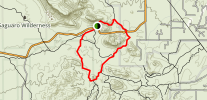 Ironwood Forest Picture Rocks Wash Trail Map