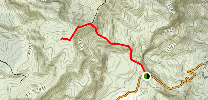 Mount Superbus Trail Map