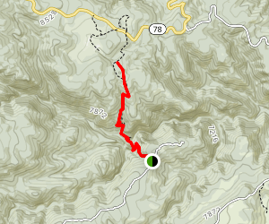 San Carlos Trail Map