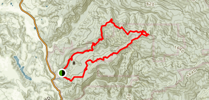 Little Butano Creek Loop Trail Map