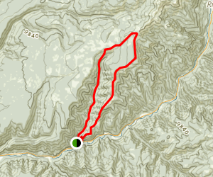 Priest Gulch and Highline Driveway Loop Trail Map