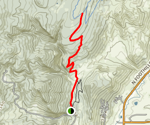 Wapiti Trail Map