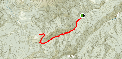 Starvation Creek Trail Map