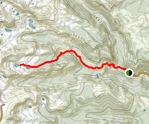 Woodland Trail to Skyscraper Reservoir Map