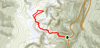 Twin Cones Map