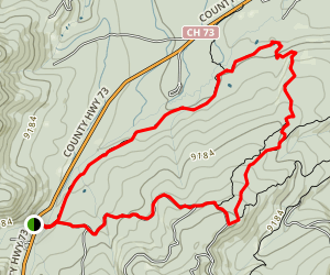 Zoom Chainsaw Flum Trail Loop Map