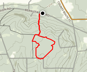 Urbana State Forest Trails Map