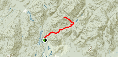 Mount Marshall via Calamity Brook Trail Map
