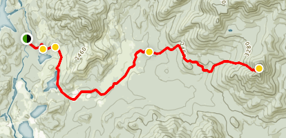 Allen Mountain Trail Map