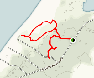Sound View Dunes Park Forest Trail Map